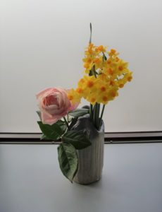 ラブリーファンデーションと庭先に咲いたミニスイセン