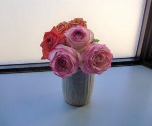 患者さんから頂いたバラ
