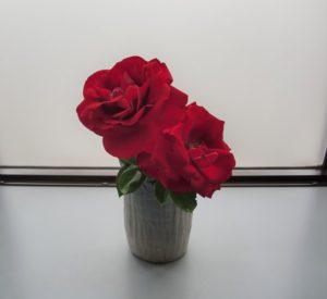 患者さんから頂いたお庭に咲いたバラ